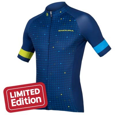 Endura Triangulate SS Jersey